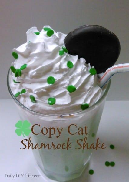 Shamrock Shake! Copycat Recipe! DailyDIYLife.com