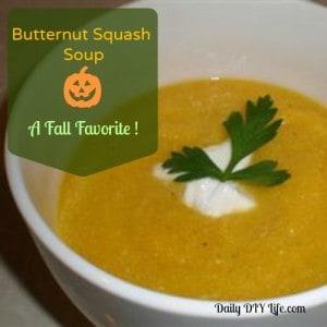 Butternut Squash Soup - A Fall Favorite - Daily DIY Life.com