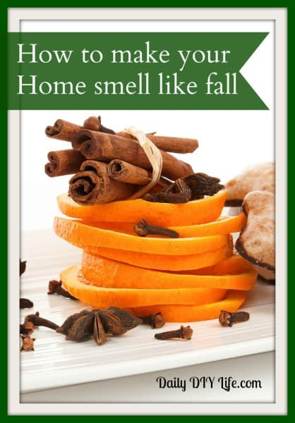 How to make your Home smell like fall! - Daily DIY Life.com