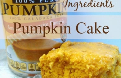 Moist and delicious Pumpkin Cake recipe using only 2 ingredients! A fantastic fall dessert packed with tons of flavor! : DailyDIYLife.com