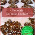Chocolate NO Bake Cookie - Dailydiylife.com