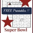 Super Bowl Bingo Cards - FREE Printable!! dailydiylife.com