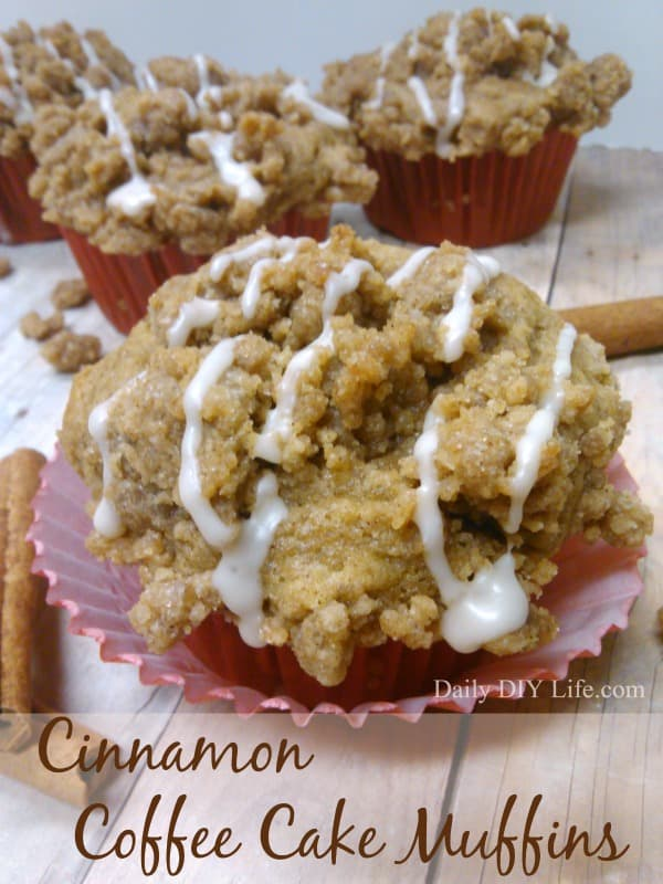 Cinnamon Coffee Cake Muffins with EXTRA Crunchy Yumminess on top! | DailyDIYLife.com